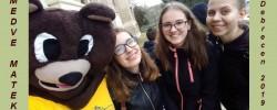 Medve-matek_2019_kiemelt